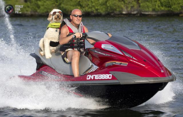 la capitaine du jour : doggy style